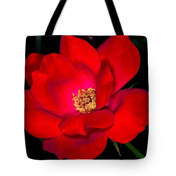 Real Red Tote Bag