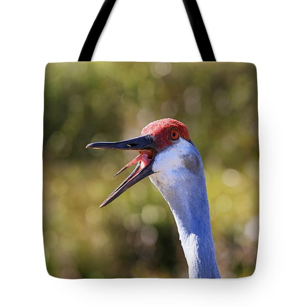 Really ?  Tote Bag