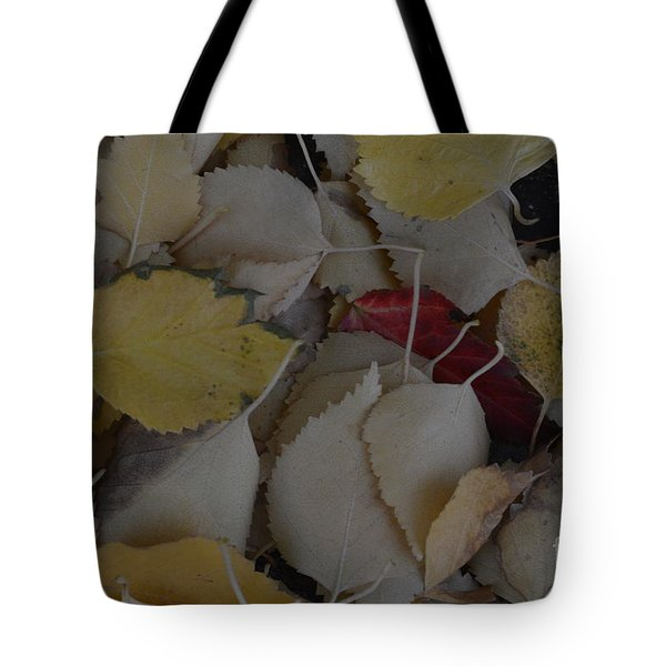 Rebel Heart Tote Bag by Brian Boyle