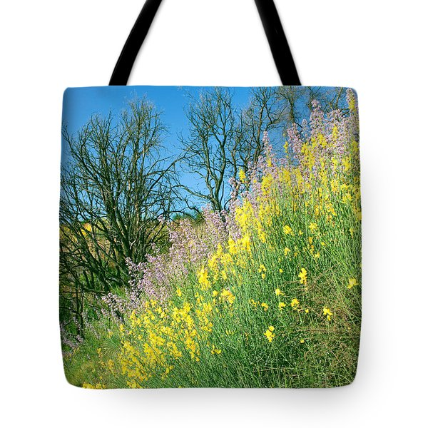 Tote Bag featuring the photograph Rebirth After Wildfires - San Gabriel Mountains California by Ram Vasudev