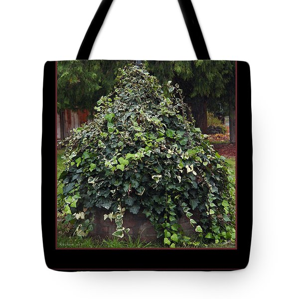 Reclaim No.1 Tote Bag by Peter Piatt