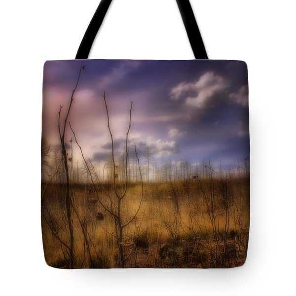 Tote Bag featuring the photograph Recovery by Ellen Heaverlo