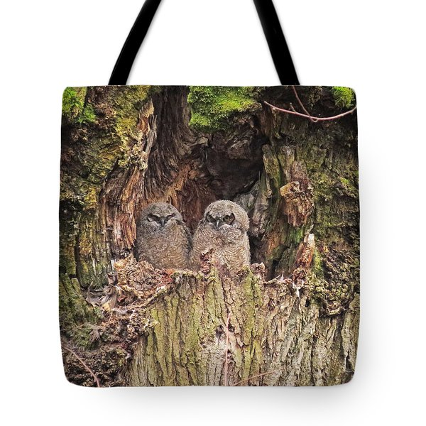 Tote Bag featuring the photograph Recycling The Old Maple Tree by I'ina Van Lawick