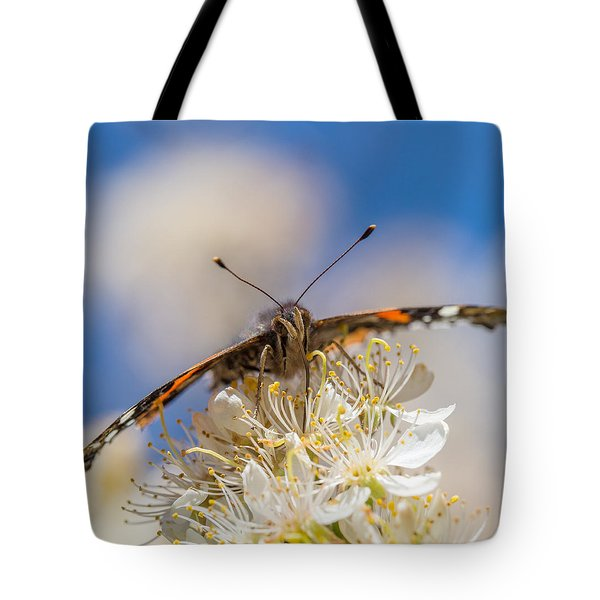 Red Admiral Butterfly On Plum Blossoms Tote Bag