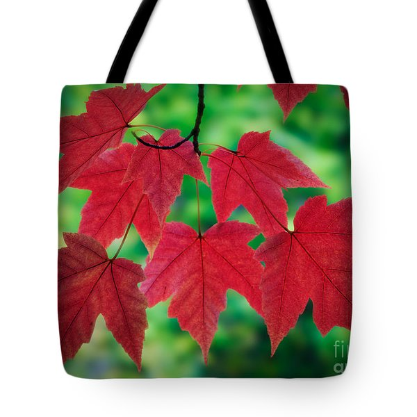 Red And Green Tote Bag by Inge Johnsson
