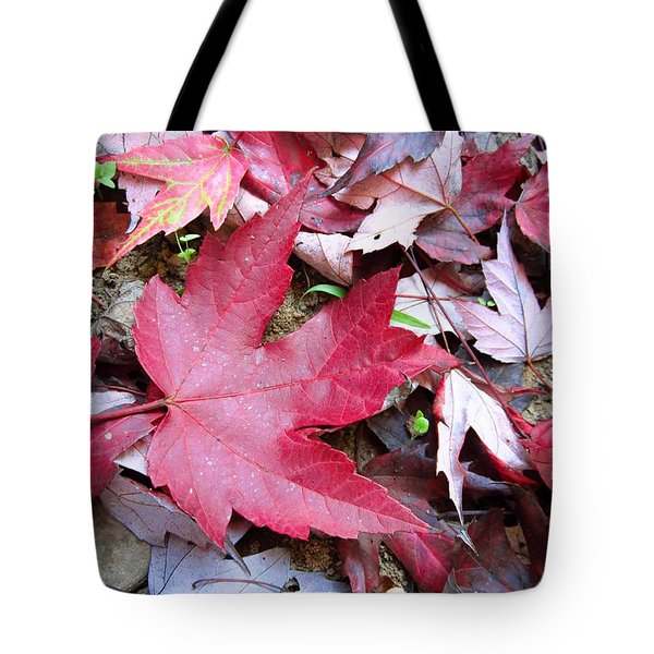 Red And Green Of Fall Tote Bag