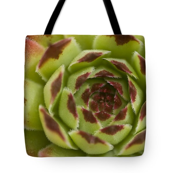Red And Green Tote Bag by Trevor Chriss
