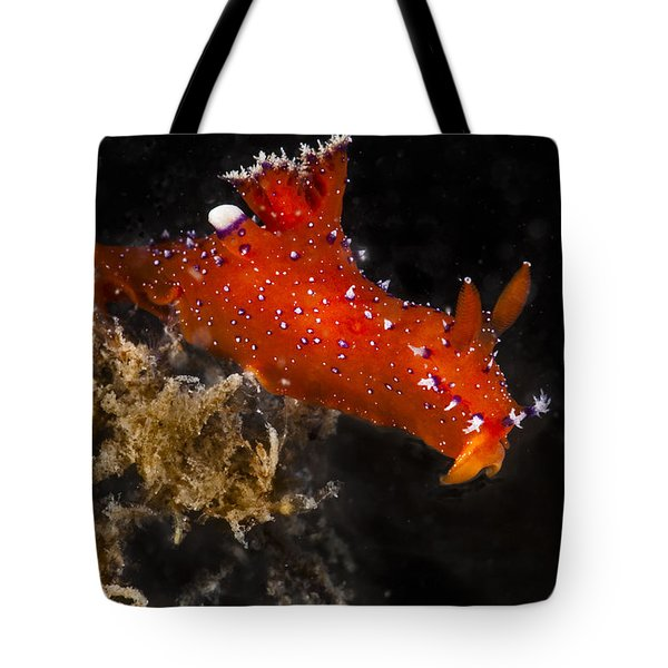 Red And Purple Tote Bag