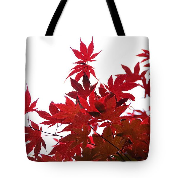 Tote Bag featuring the photograph Red And White by Debra Martz