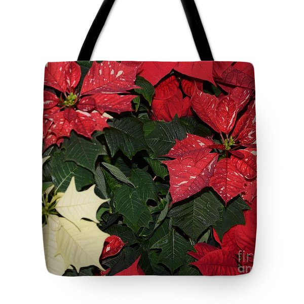 Red And White Poinsettia Tote Bag by Kathleen Struckle