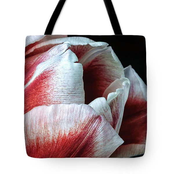 Red And White Tulip Closeup Tote Bag by Madonna Martin