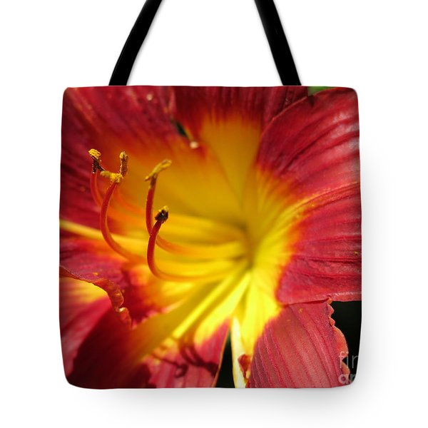 Red And Yellow Day Lily Tote Bag