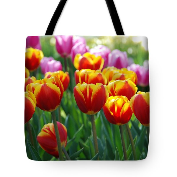 Tote Bag featuring the photograph Red And Yellow Tulips  by Allen Beatty