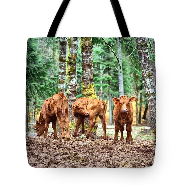 Red Angus Calves Tote Bag