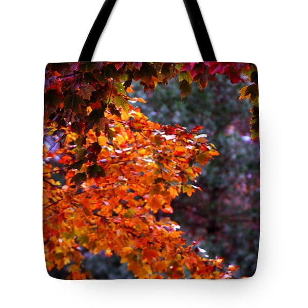 Red Autumn Leaves Tote Bag by Andy Lawless