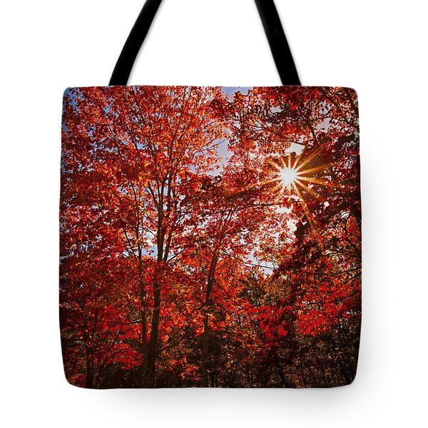 Tote Bag featuring the photograph Red Autumn Leaves by Jerry Cowart