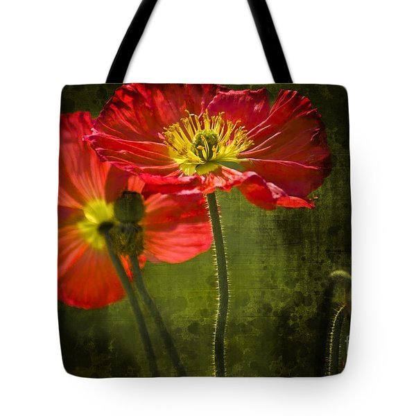 Red Beauties In The Field Tote Bag by Heiko Koehrer-Wagner