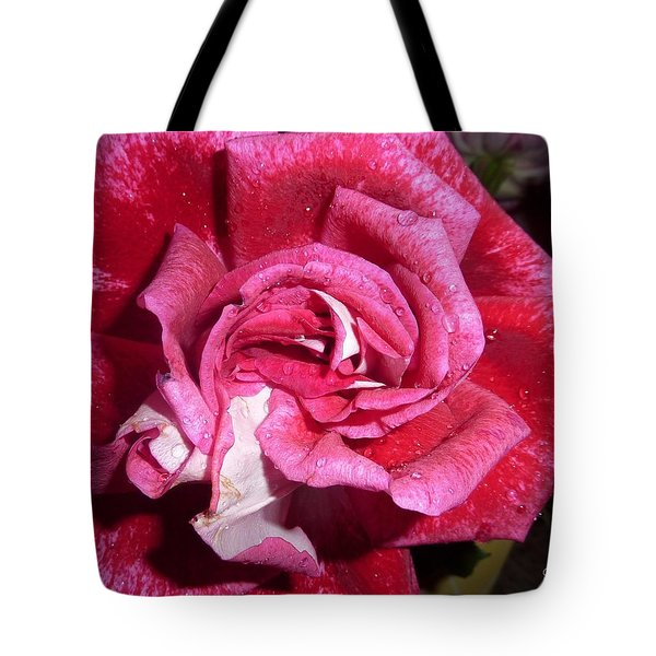Red Beauty 2  Tote Bag
