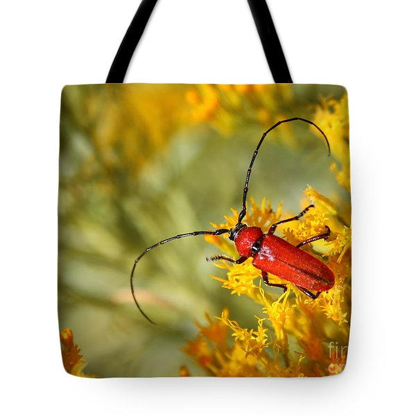 Red Beetle Tote Bag by Marty Fancy