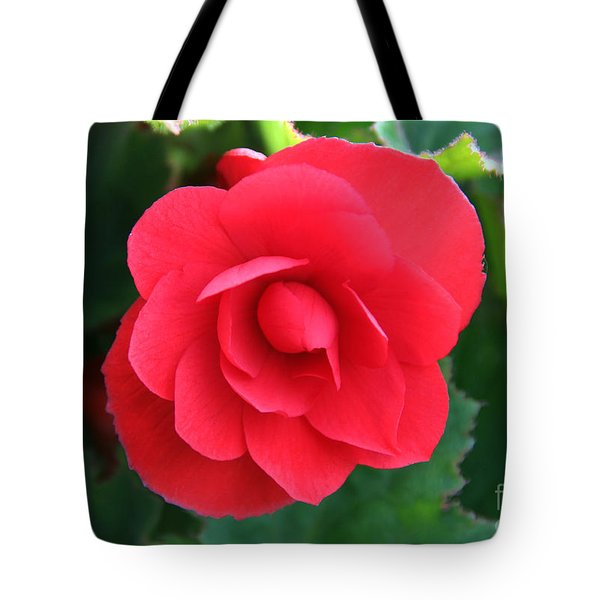 Tote Bag featuring the photograph Red Begonia by Sergey Lukashin