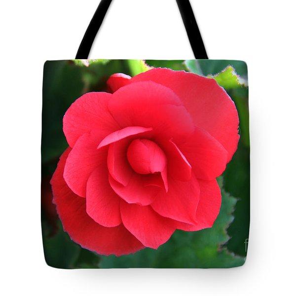 Red Begonia Tote Bag by Sergey Lukashin