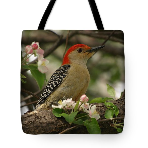 Tote Bag featuring the photograph Red-bellied Woodpecker by James Peterson