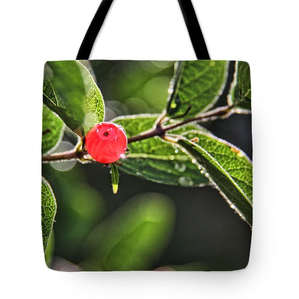 Red Berry Tote Bag by Daniel Sheldon