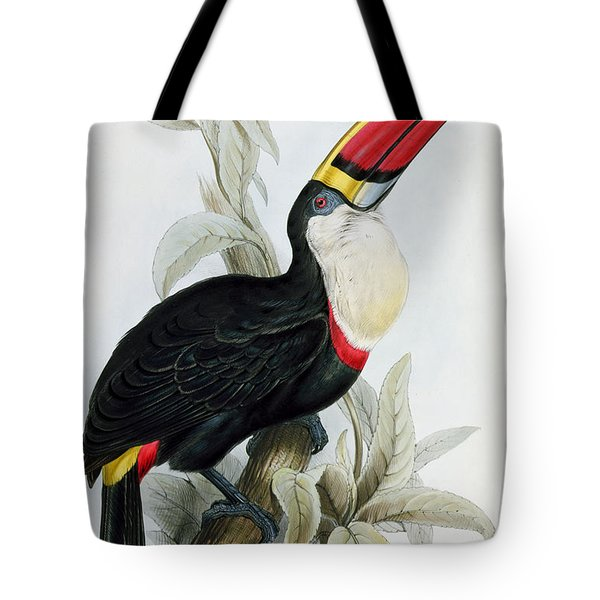 Red-billed Toucan Tote Bag by Edward Lear