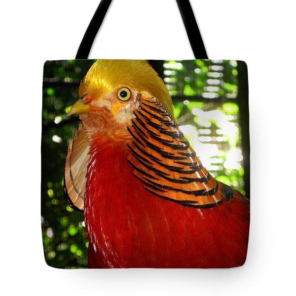 Red Bird Tote Bag by Pamela Walton