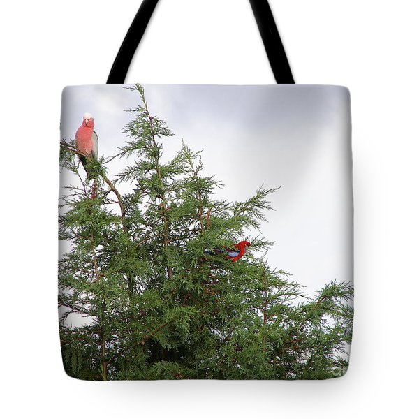 Tote Bag featuring the photograph Red-breasted Cockatoos And Crimson Rosellas by Bev Conover