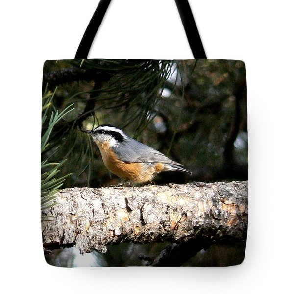Red-breasted Nuthatch In Pine Tree Tote Bag