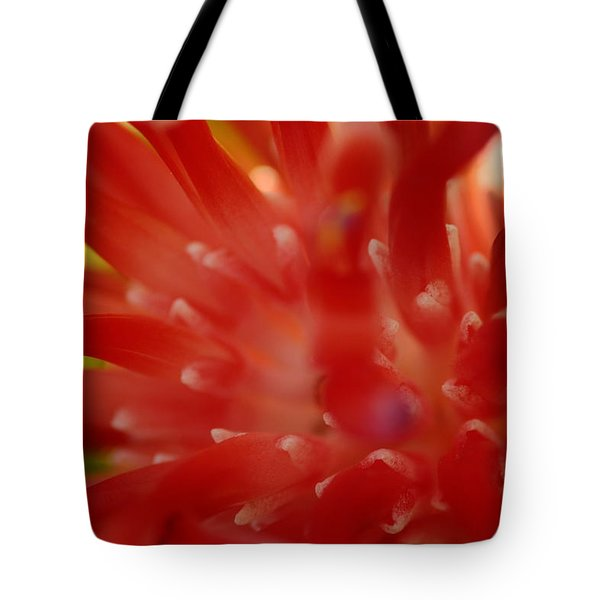 Tote Bag featuring the photograph Red Bromeliad by Greg Allore