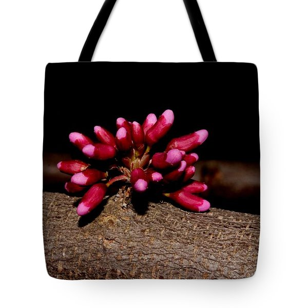 Red Bud Buds Tote Bag