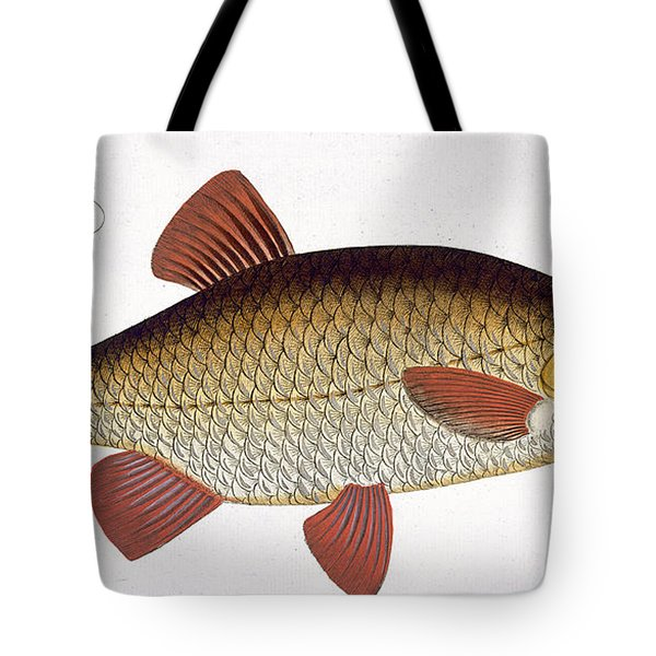 Red Carp Tote Bag