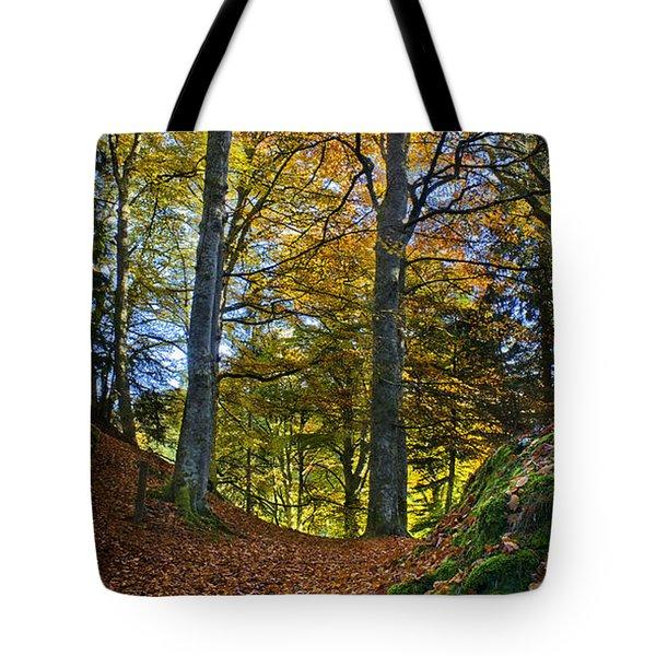 Red Carpet In Reelig Glen During Autumn Tote Bag
