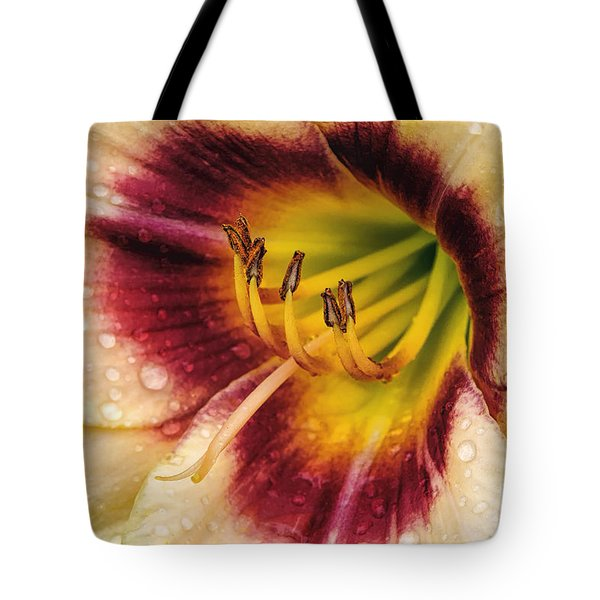 Red-centered Daylily With Raindrops Tote Bag by Madonna Martin