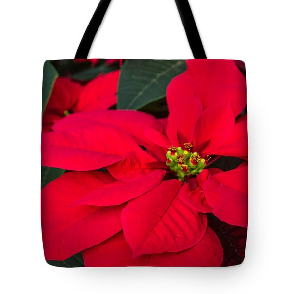 Red Christmas Beauty Tote Bag
