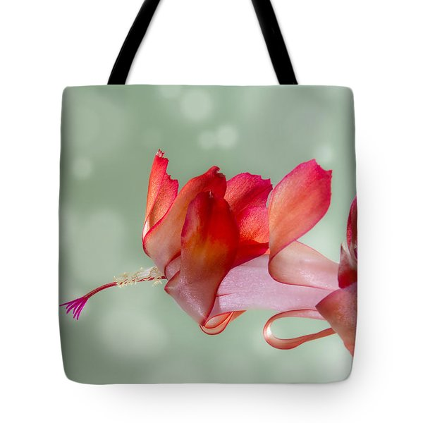 Red Christmas Cactus Bloom Tote Bag by Patti Deters