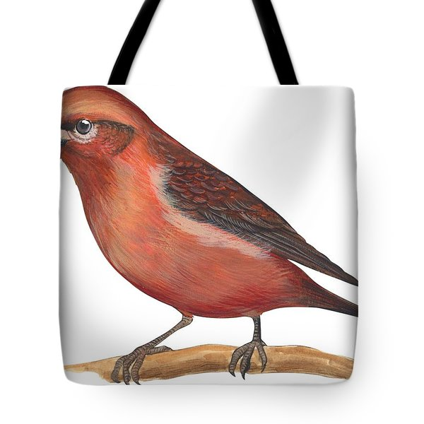 Red Crossbill Tote Bag by Anonymous