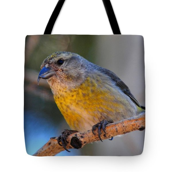 Red Crossbill Female Tote Bag by Marilyn Burton