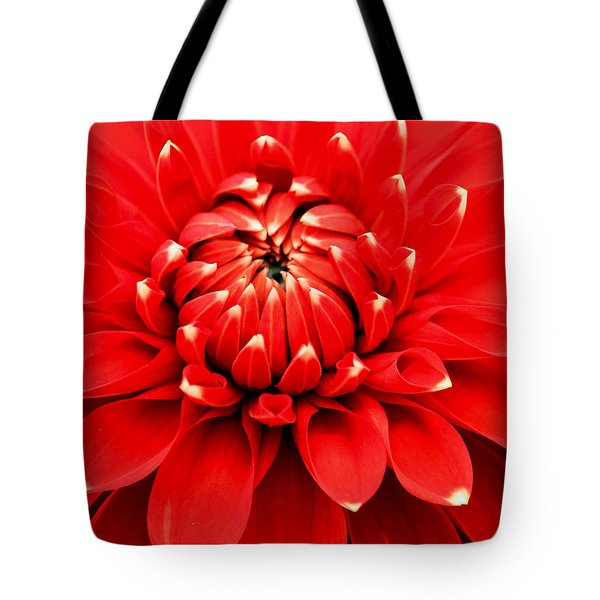 Red Dahlia With White Tips Tote Bag by E Faithe Lester