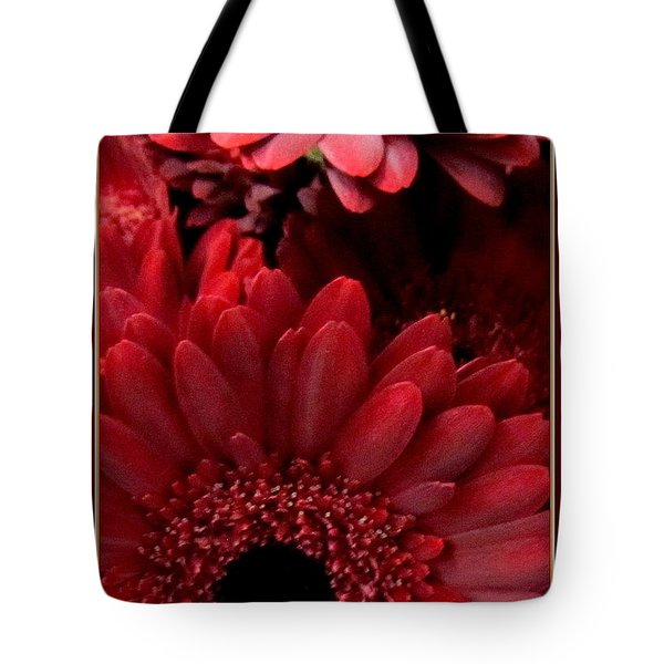 Red Daisies Tote Bag by Danielle  Parent