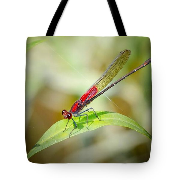 Red Damselfly Tote Bag by Peggy Franz