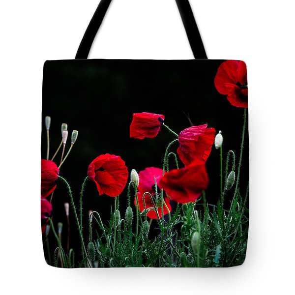 Tote Bag featuring the photograph Red Dance by Edgar Laureano