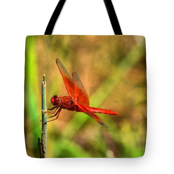 Red Dragon Dreams Tote Bag