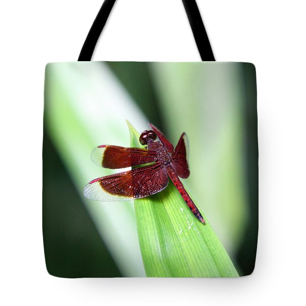 Tote Bag featuring the photograph Red Dragon by Shoal Hollingsworth