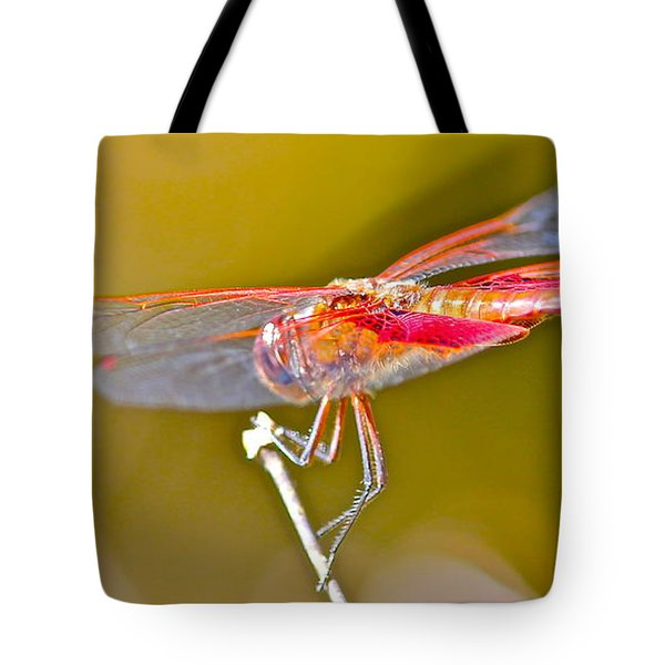 Tote Bag featuring the photograph Red Dragonfly by Cyril Maza