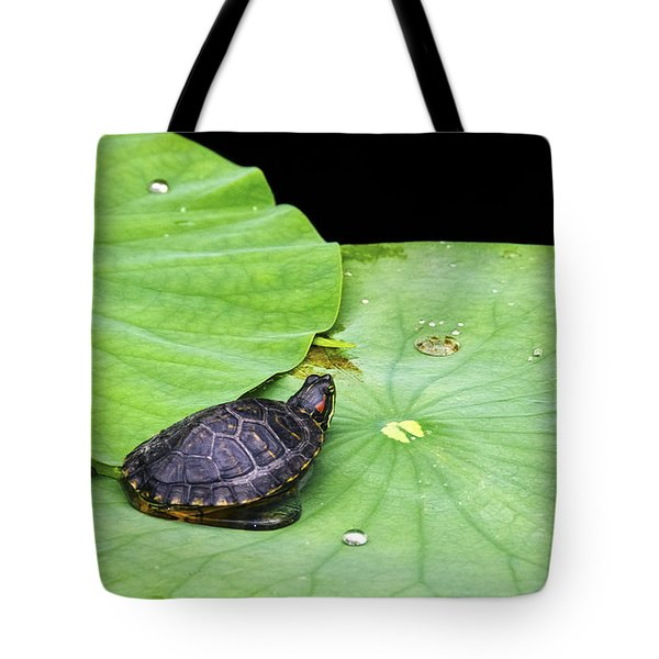 Red-eared Slider Tote Bag by Greg Reed