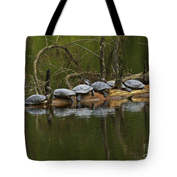 Red-eared Slider Turtles Tote Bag