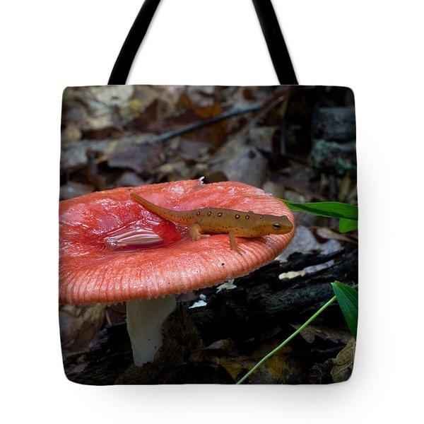 Red Eft On A Mushroom Tote Bag
